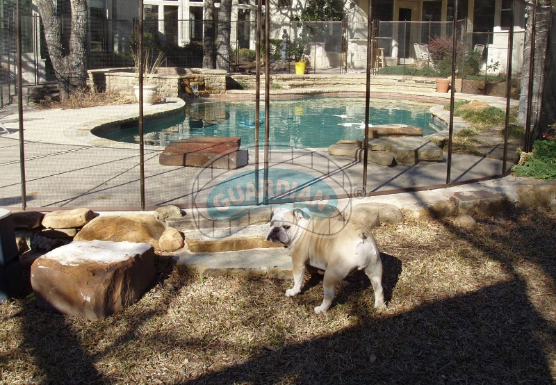 Keep Your Pets Safe With Guardian Mesh Pet Fence