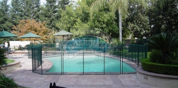 pool-pet-fencing.jpg