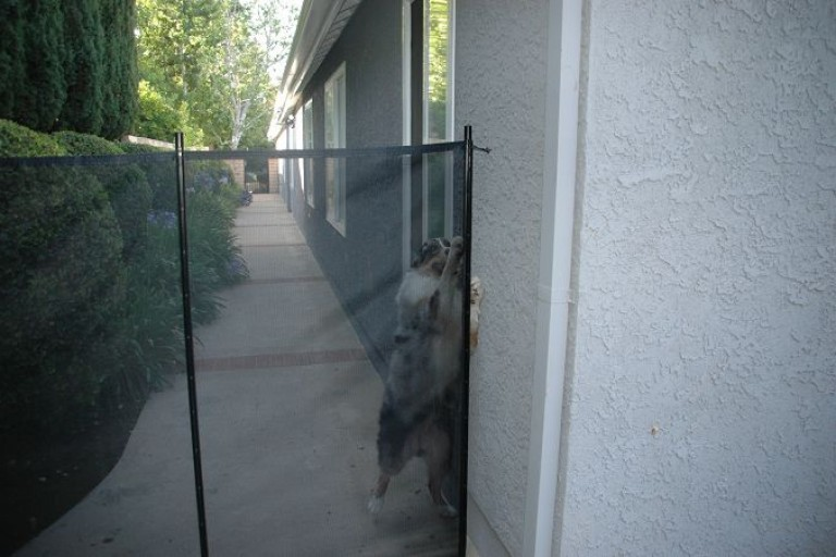 mesh-fencing-for-dogs