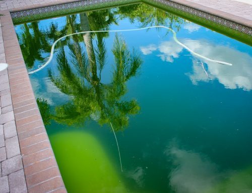 What Causes Cloudy Swimming Pools and How to Clear Them?
