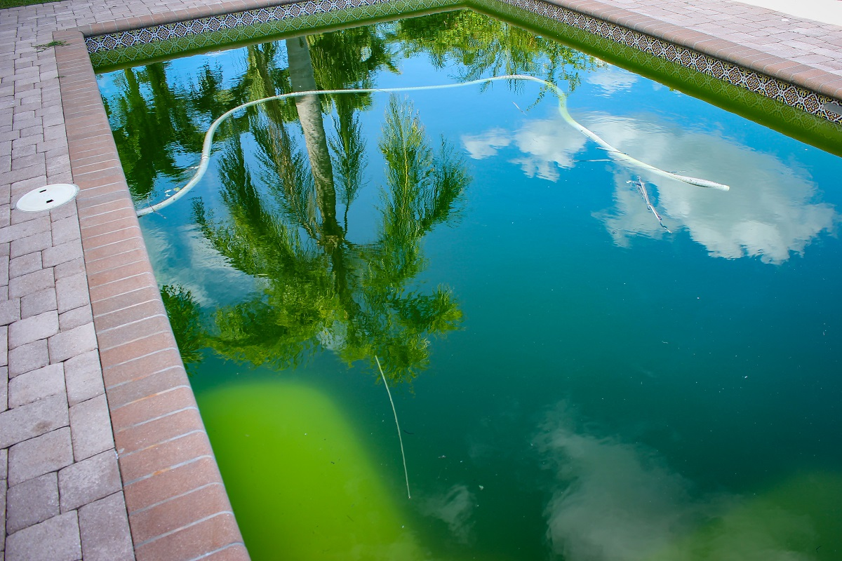 Heres-How-To-Fix-Your-Cloudy-Swimming-Pool-Water