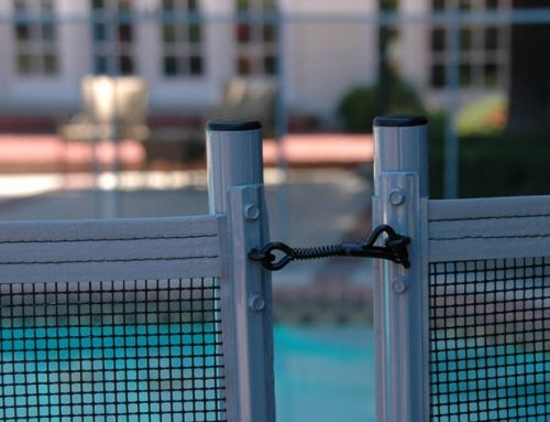 Reasons You Need a Pool Fence